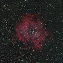 NGC2237 The Rosette Nebula,                                Olivier