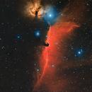 IC434 DSLR - HaRGB,                                Arno Rottal