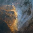 IC5070 The Pelican nebula,                                Komet