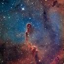 IC 1396 Elephant's Trunk Nebula,                                Matt Harbison