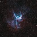 NGC2359 Thor's Helmet (HOO),                                Bryan He