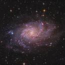 First light TS-Optics 8″ f/4 UNC: M33 – 2018,                                Peter Folkesson