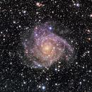 IC342,                                Bill Clugston