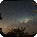 Milky Way setting over the South African bush,                                Will Thompson