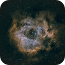 Caldwell 49 - Rosette Nebula,                                André Bremer