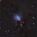 NGC 1333,                                sky-watcher (johny)