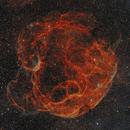 SH2-240 Spaghetti Nebula in SHO,                                Roland Schliessus