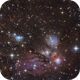 NGC 2170,                                Andreas Max Böckle