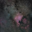 NGC7000 Nordamerika-Nebel,                                Erwin Gastinger