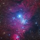 Cone and Fox Fur nebulae,                                Sven Hoffmann