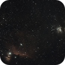 Wide field Orion and Horsehead Nebula,                                Mr Ben Wilkes