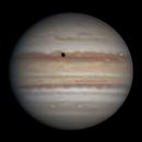 Jupiter | 2019-08-20 3:48 | RGB,                                Chappel Astro