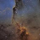 IC1396, Elephant's trunk nebulae,                                Quentin Gineys