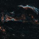 Western Veil Nebula & Pickering's Triangle,                                Maria Pavlou