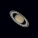 Saturn,                                olivdeso