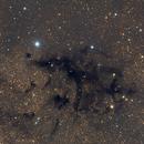The LDN 673 dark nebula in Aquila,                                Francesco Meschia