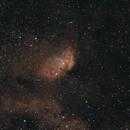 Sh2-101 Tulip Nebula in Cygnus (HOO),                                Benny Colyn