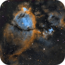 IC 1795 : The Fish Head Nebula,                                Mike Kline