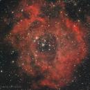 Rosette Nebula - Caldwell 49,                                Delberson