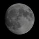 Mond 2019-01-19,                                Bruno