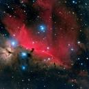 The Flame Nebula (NGC 2024/Sh2-277) and Horsehead Nebula (IC-434/Barnard 33),                                Doug Griffith