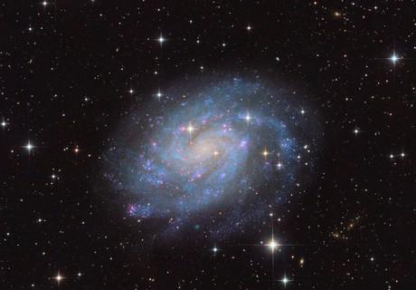 NGC 300,                                Lee Borsboom