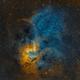 Sh2-132 - The Lion Nebula,                                Chuck's Astrophot...