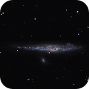 NGC 4631,                                Günther Eder