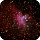 The Eagle Nebula,                                HaydenAstro(NZ)