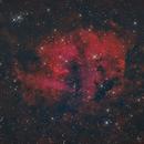 The Lion Nebula,                                Tristan Campbell