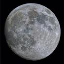 Almost-full Worm Moon,                                Shannon Calvert
