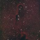 Elephant Trunk IC1395,                                gotak