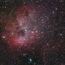 Tadpole Nebula,                                allanv28