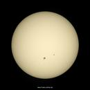 Sonnenflecken / Sun Spots - 20201128,                                firstLight