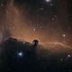 The Horsehead Nebula, B33,                                Steven Bellavia