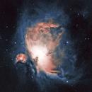 M42 Orion Nebula,                                cajusor