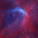 WR 134 • Wolf-Rayet Bubble in HOO,                                Douglas J Struble