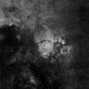 NGC896,                                Tony Sarra