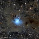 Iris Nebula,                                Paolo Demaria