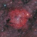 Wide field of IC 1396,                                Yannick Juillet