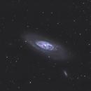 Messier 106,                                drivingcat