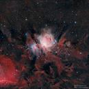 Orion Nebula Wide(ish) Field,                                Michel Makhlouta
