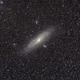M31 widefield,                                Michael Kohl