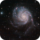 Pinwheel Galaxie M101,                                Holger Gräpel