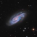 NGC 908, The starburst galaxy in Cetus,                                José Joaquín Pérez