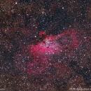 M16 - Nebulosa del Águila,                                Manuel J. Moreno