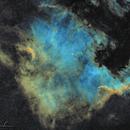 NGC7000 in SHO,                                Michel Lamarche