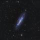 NGC 4236 LRGB,                                Gary Opitz