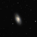 M64 the Blackeye galaxy,                                Steve Coates