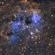 Nébuleuse des Têtards IC410,                                Walliang Jacques